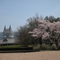 14日に福井県総合グリーンセンターに行って来ました。NO.3