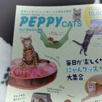 ペピイのカタログ来た!