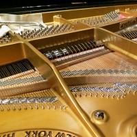 ピアノ探検