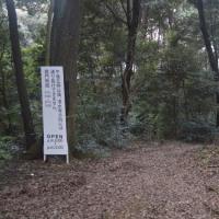 まち歩き東0433  清水寺 への道