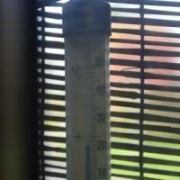 九月中旬の気温だそうです。