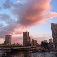 あかね雲映す隅田川