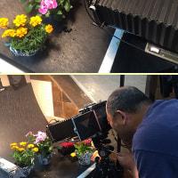 綺麗な花を撮ろう!大判カメラ勉強会・接写編が終了です。