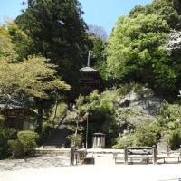 松尾寺には大変高貴なお方がお眠りになられています