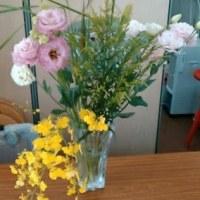 6月2回目の花