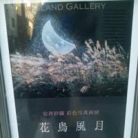 安斉紗織  彩色写真画展@ISLAND GALLERY(〜1月29日)
