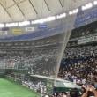 都市対抗野球観戦