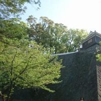 九州へ(復興)