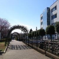 埼玉富士見市議選明日投票