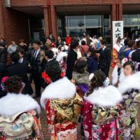 ◆2017年の綾瀬市の新成人は847名