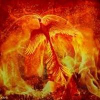 あちこち「SYOWA」 68  火の鳥