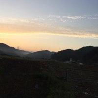 早朝(寒い)