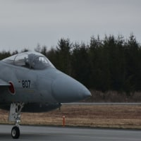 4/19 千歳 F-15