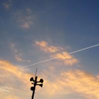 飛行機雲、見っけ!(^O^)