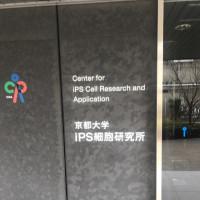 iPS細胞による血小板量産化計画 本記