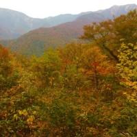 白山の紅葉前線