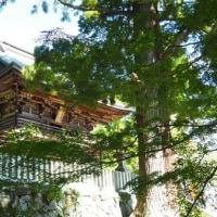 関東ふれあいの道 茨城11 筑波山めぐりから旧参道へのみち その4