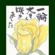 黄色ばら(絵手紙)