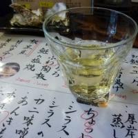 札幌の下町ウルフ おさかな店での一人宴会