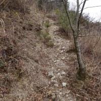 2017.3.25 杖ヶ森 1019m * 高知県本山町赤荒峠より