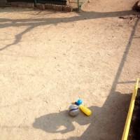 サッカー&野球