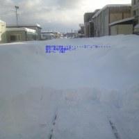 雪ってすごい