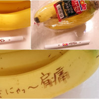「バナペン」「フォト刺繡…」
