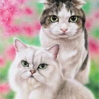 ゴン&ネネの肖像