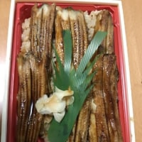 日生の牡蠣で晩ごはん♪