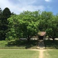 新緑の閑谷学校