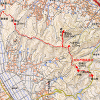 太田市桐生市みどり市にまたがる八王子丘陵を縦走するつもりであったが・・・・