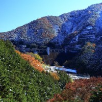 晩秋の桐生川ダム、雪化粧、黄葉、そして緑葉に囲まれて、2016年11月