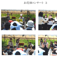 「安久お花畑コンサート」