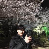 イ・ジョンソク Weibo更新「さ・く・ら~」