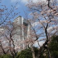 スポコミ・カワラ版 4月22日(土)仏滅