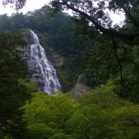千尋滝・ニコニコ滝(大杉谷)