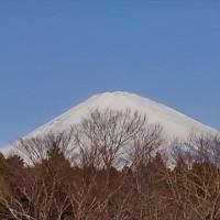 埼玉スーパーアリーナまで