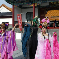 17th Chinese Cosplay Festival:Supplementary