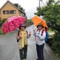 5/13(土)、「河内長野walk&run」クラブ定例会!