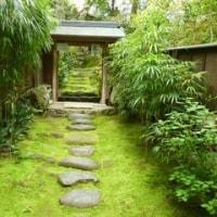 京都フリーツアー