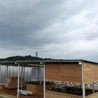 梅雨 〜地元ラン