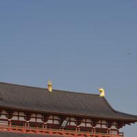 ブルーインパルスを見に行く 平城京天平祭・奈良基地開設60周年記念