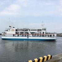 長洲港フェリーのユリカモメ
