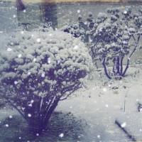 ただ 吹雪いているだけ