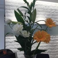 今週のお花とハロウィンイベント