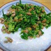 おばさんの料理教室No. 2586 キクイモの葉と納豆混ぜご飯