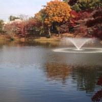 岡崎の街を散策するウーキングを