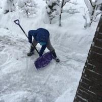 県内大雪!