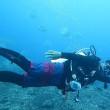 潜水艇と一緒に潜る