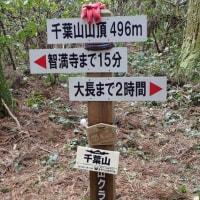 千葉山周辺
